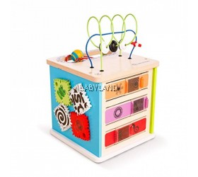 Hape Baby Einstein Innovation Station (12M+)
